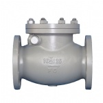 JIS F7373 10K Marine cast iron swing check valve
