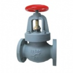 JIS F7375 10K Marine cast iron screw down non return globe valve